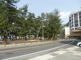 大浜海水浴場2.jpg