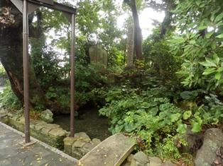 広田の寒泉.jpg