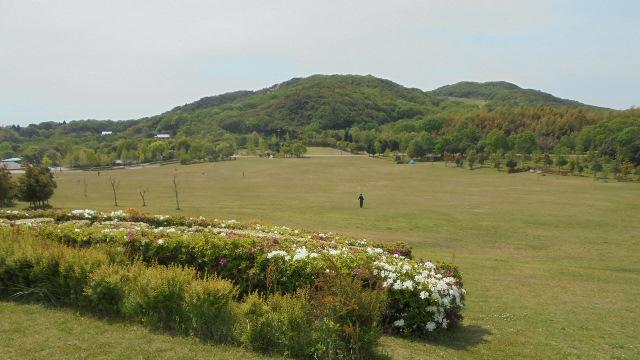 淡路島公園5.jpg