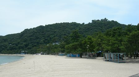 南淡路水仙ライン10.jpg