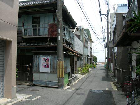 南淡路水仙ライン5.jpg