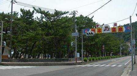 南淡路水仙ライン8.jpg