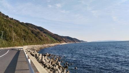 灘黒岩水仙郷3.jpg
