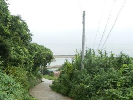船瀬キャンプ場7.jpg