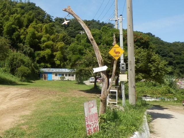 船瀬漁港2.jpg