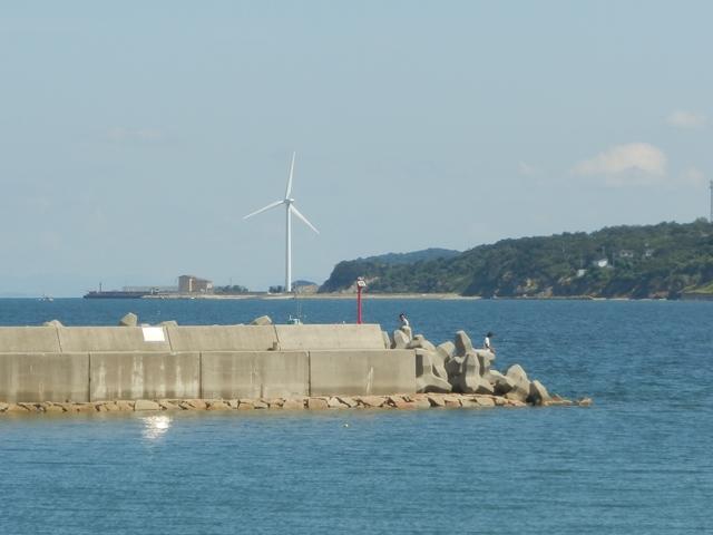 船瀬漁港9.jpg