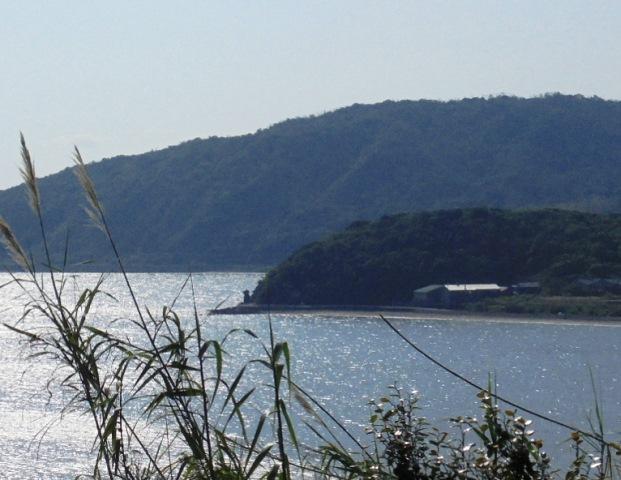 雁子岬14.jpg